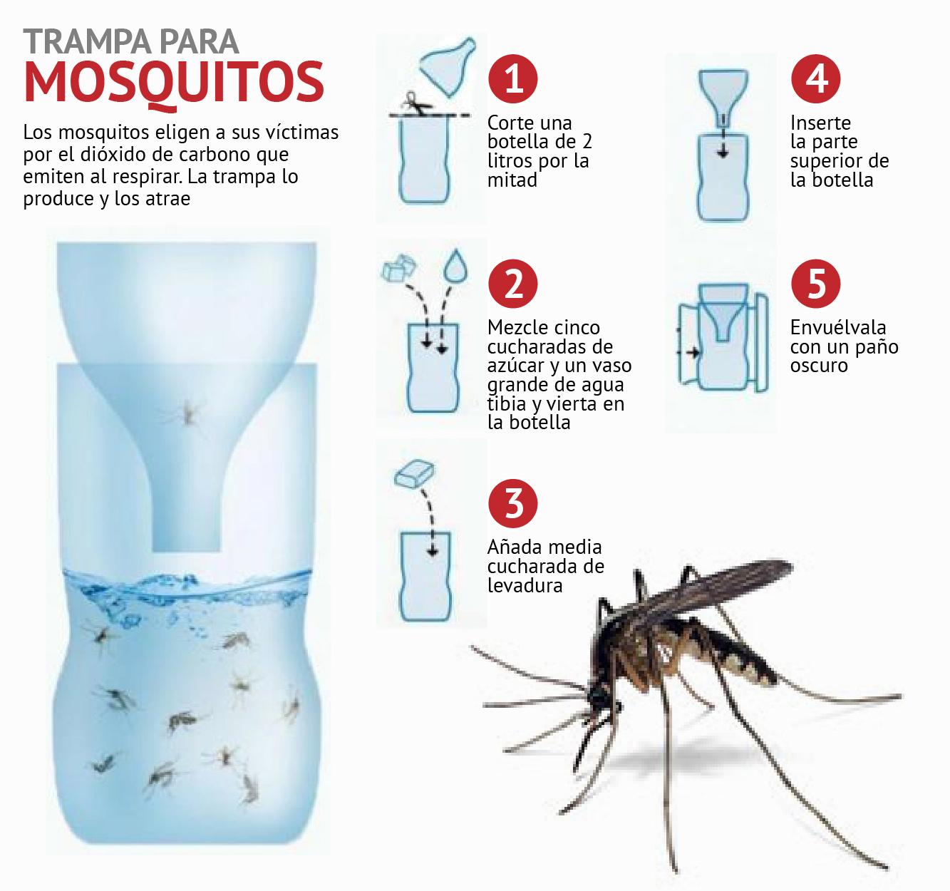 H galoas trampa casera para mosquitos la opini n - Trampas para ratones de campo ...