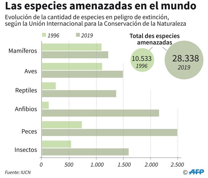 Más de 28 mil especies están en peligro de extinción