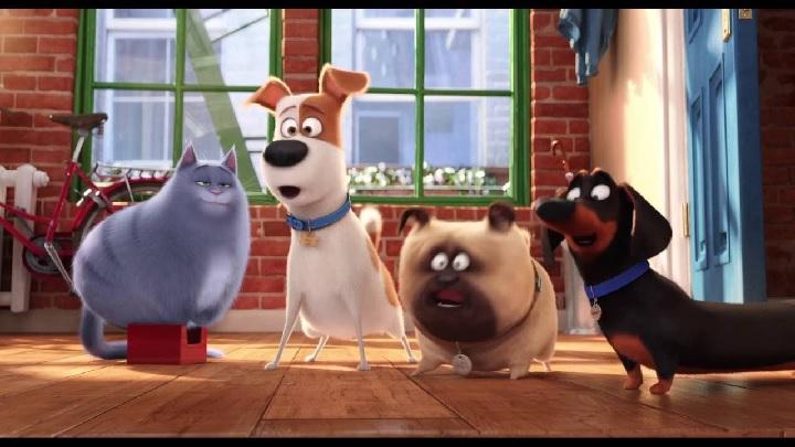 Películas para recordar hoy Día del Perro
